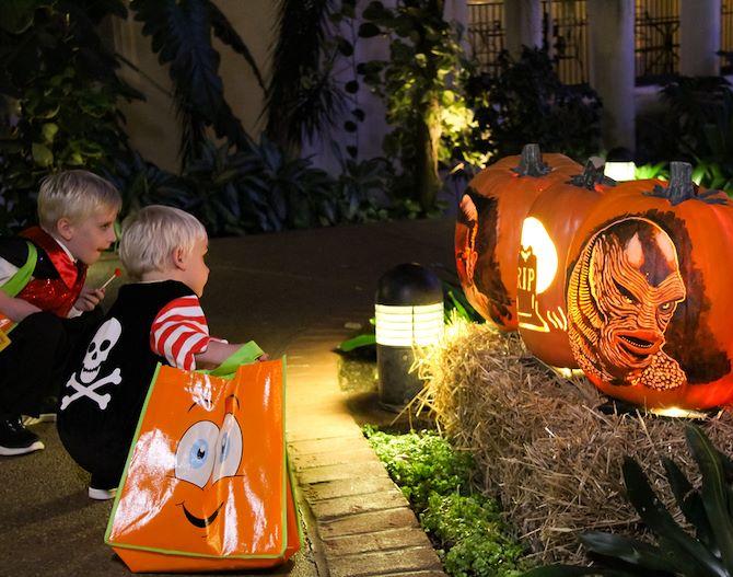 Two kids in halloween costumes kneeling in front of pumpkins in Gaylord Opryland's atrium