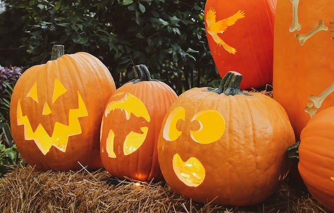 Carved pumpkins - Fall at Gaylord Opryland