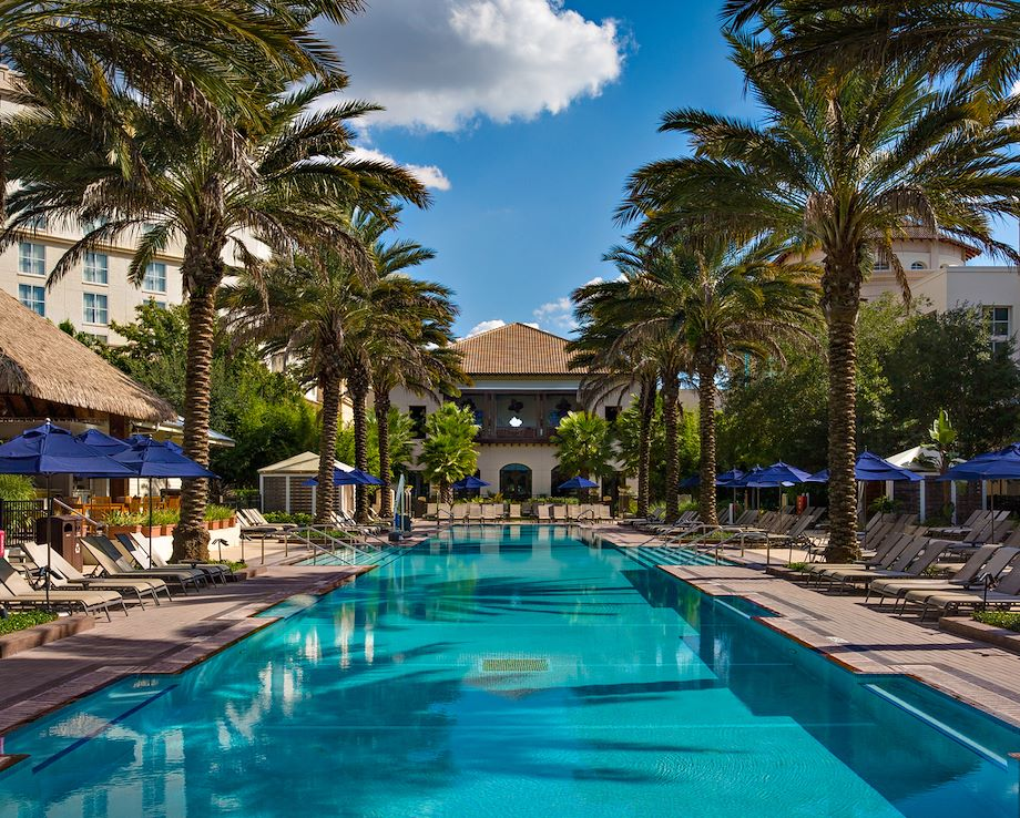South Beach Pool lined with Palm trees - Gaylord Palms Resort