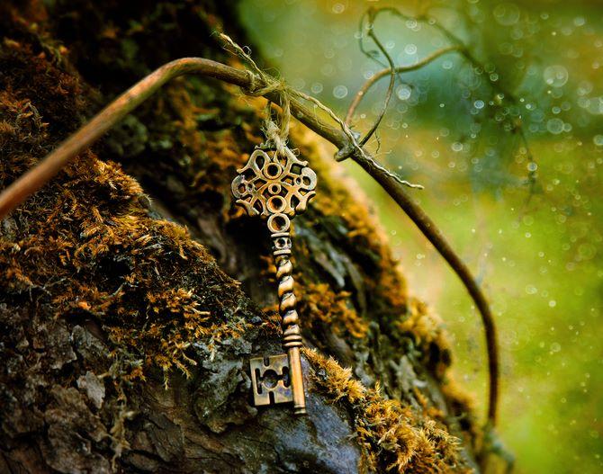 Keys on tree - Escape Room Gaylord Palms
