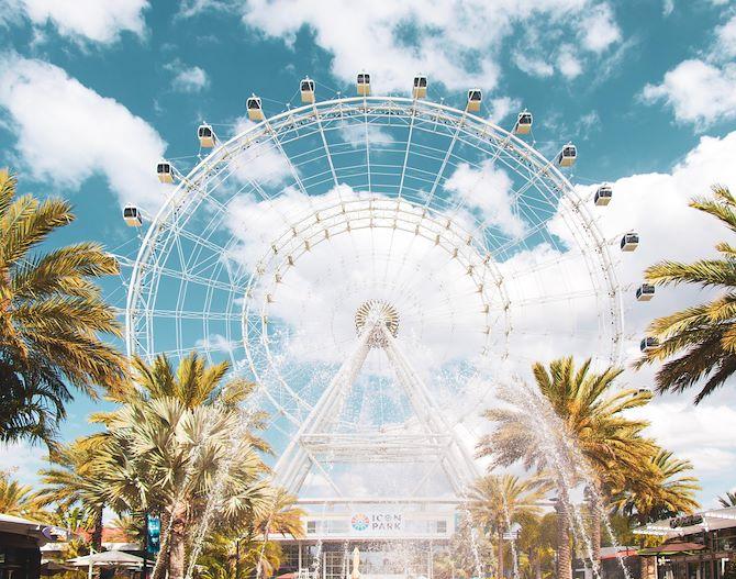 Ferris Wheel between trees - orlando theme parks