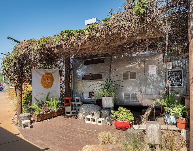 Picture of Airstream that sells succulents