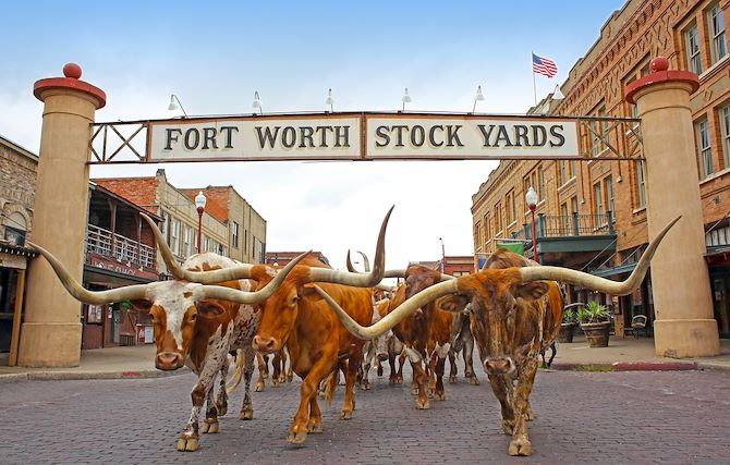 Fort Worth Stockyards near The Worthington Renaissance Fort Worth Hotel