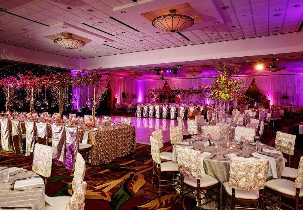Reception - South Asian Wedding Reception