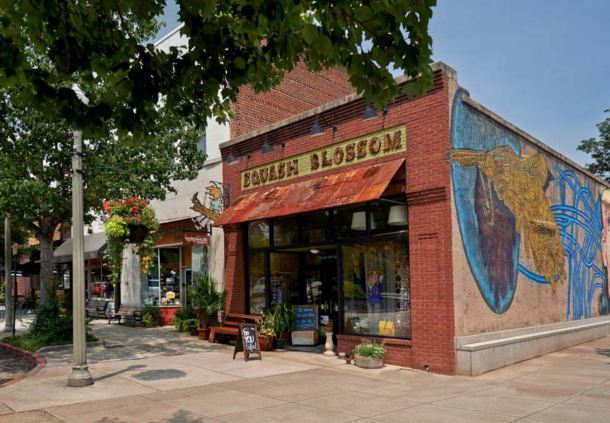 Historic Decatur Shopping
