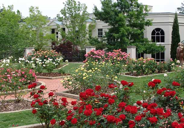 Dunn Formal Rose Garden