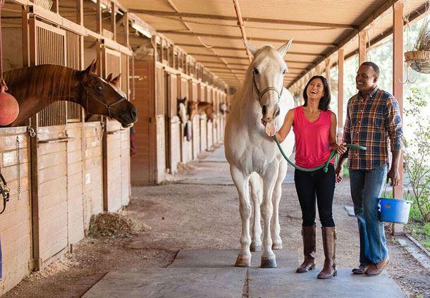 LA Equestrian Center
