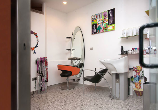 Hairstylist Area