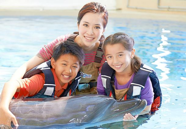 Ocean Park Dolphin Encounter