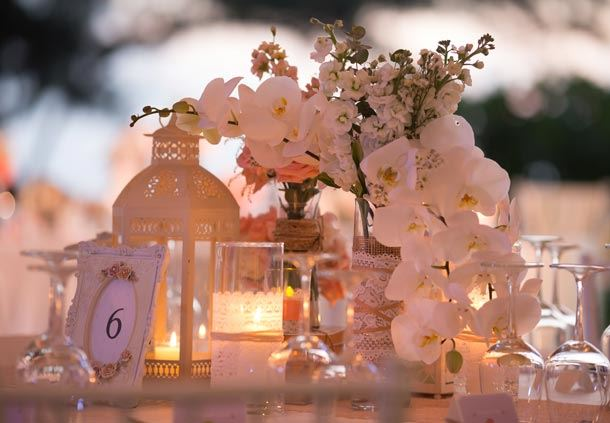 Reception Dinner - Centerpieces