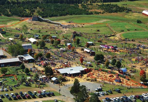 Cox Farms Falls Festival