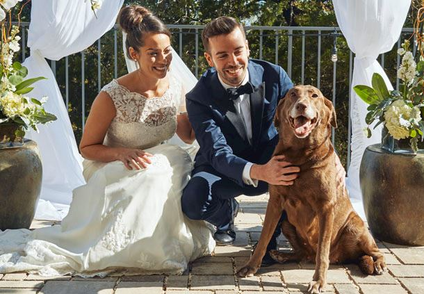 Pet-Friendly Wedding