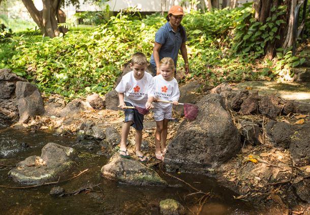 Exploring at Mauna Kea