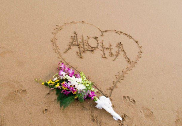 Aloha means love