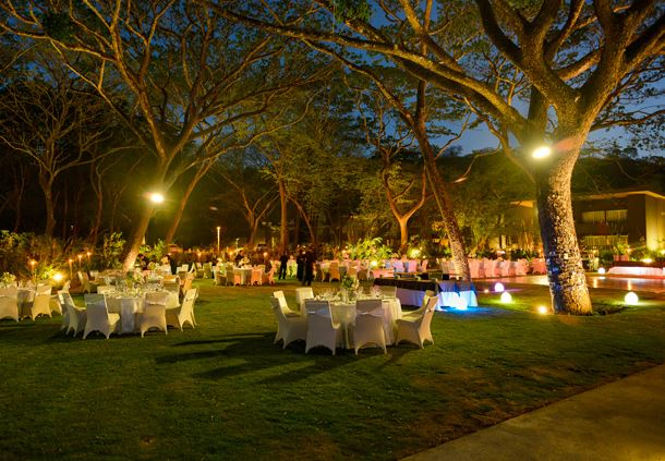Wedding Reception and Packages