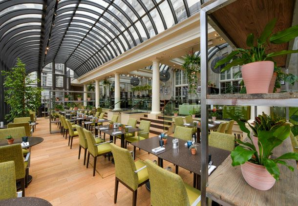 The Terrace on Piccadilly