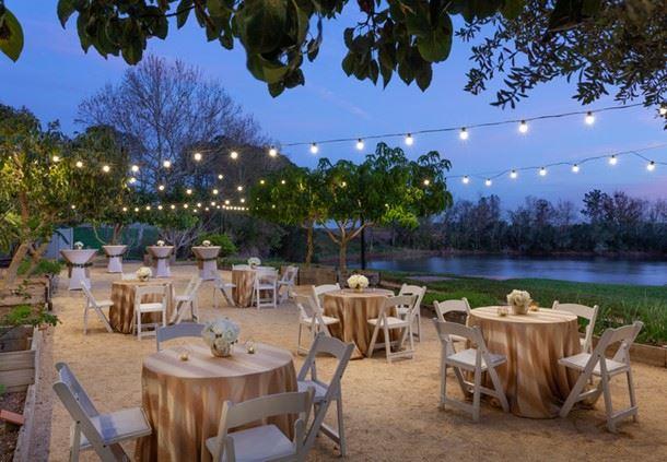 Chefs' Garden - Social Setup