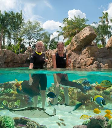 Discovery Cove Grand Reef