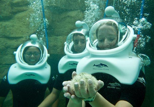 Grand Reef SeaVenture