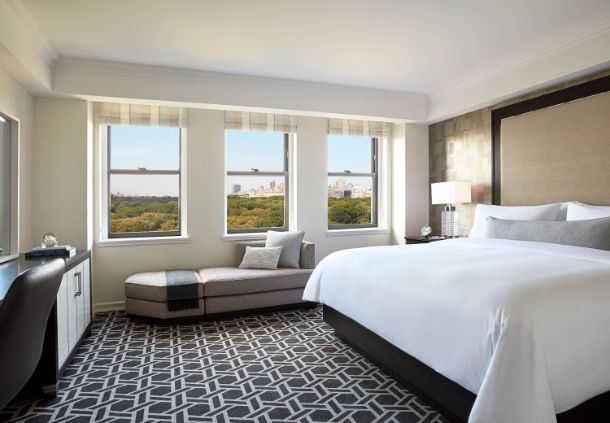 Central Park King Guest Room
