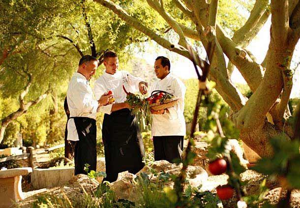 Chef's Herb Garden