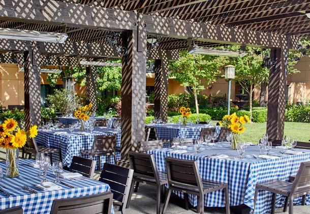 Gorgeous Vineyard Terrace