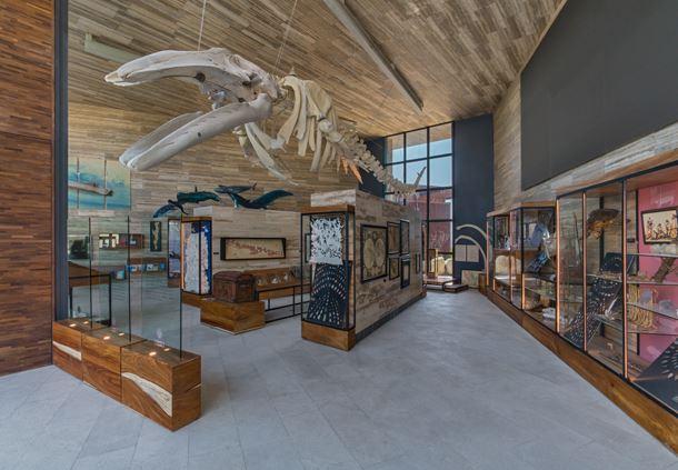 Gabinete del Barco Exhibit
