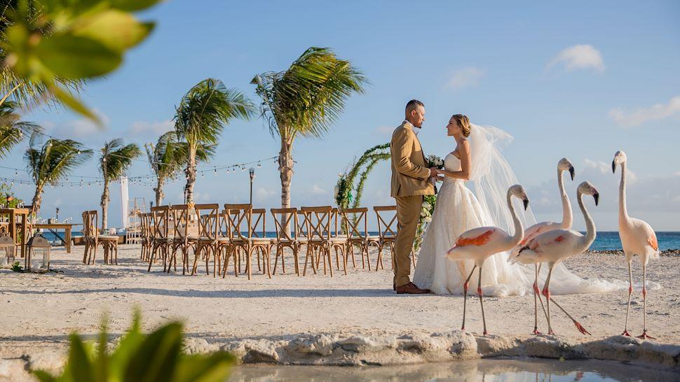 Coral Beach Weddings