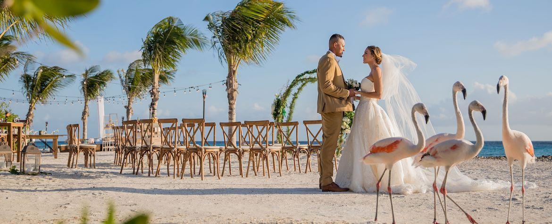 AUABR_wedding_home