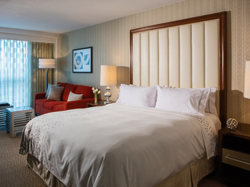 Newark Airport hotel room