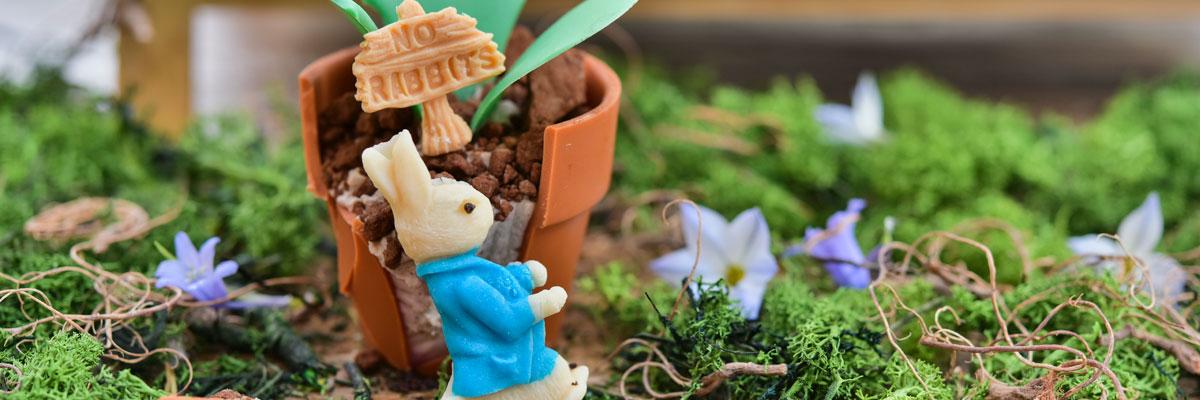 Peter Rabbit Afternoon Tea