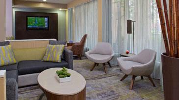 Lounge & Conversation Area
