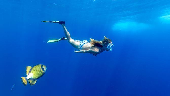 mruxr-experiences-snorkeling