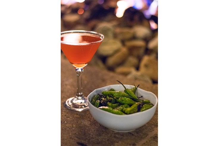 Light Bites & Cocktails