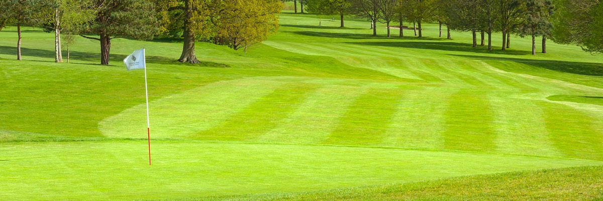 Tudor Park Country Club - 16th Hole